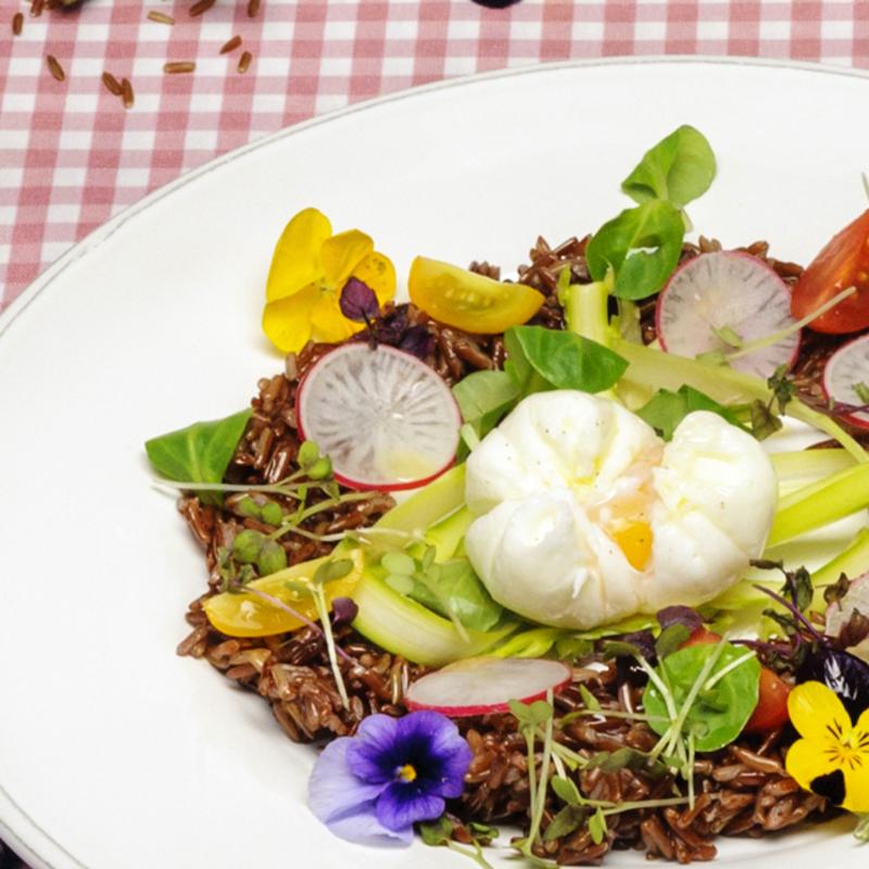 Ricetta per il pranzo di Pasqua. Riso rosso Ermes con uovo in camicia e misticanza.