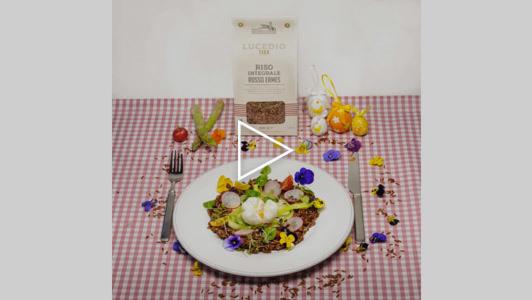 Uova di Pasqua poché su misticanza di primavera e riso rosso Ermes